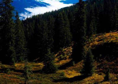 Berge_Aussicht